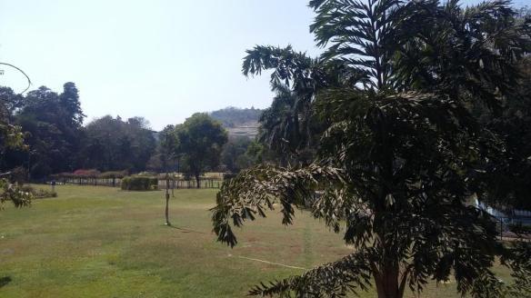 Parvati hills view