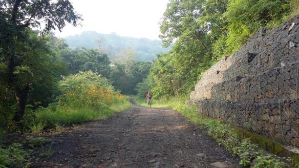 nature-walk